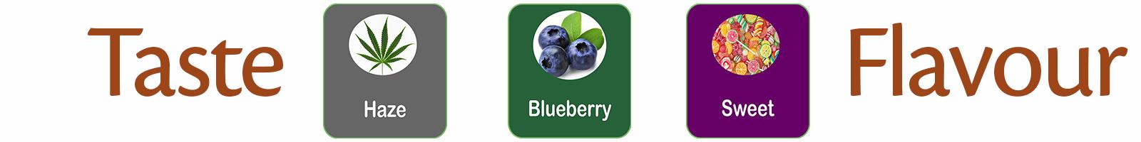 Jackberry smaak en geur beleving van blueberry en haze in een indica